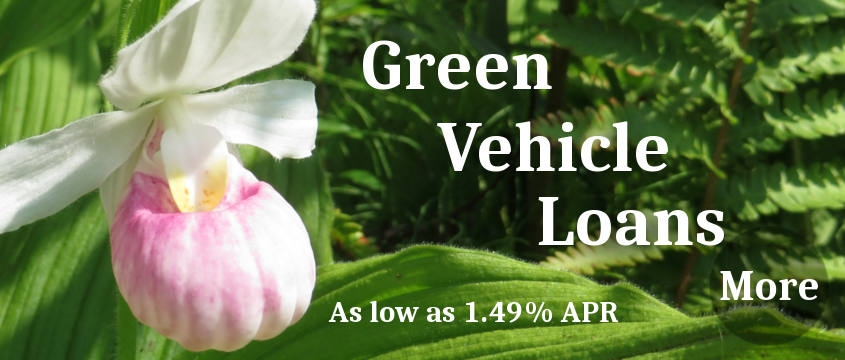 Green Vehicle Loans